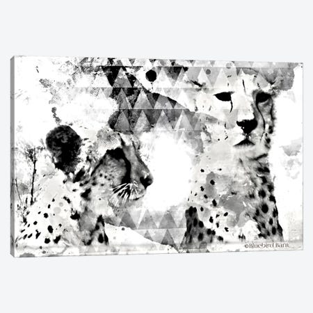Modern Black & White Cheetahs    Canvas Print #BLB187} by Bluebird Barn Canvas Wall Art