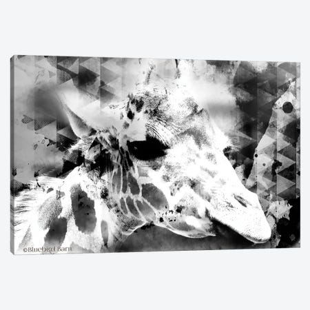 Modern Black & White Giraffe     Canvas Print #BLB189} by Bluebird Barn Canvas Print