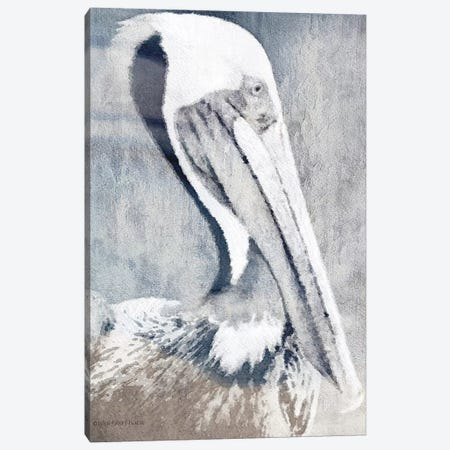 Pelican Canvas Print #BLB228} by Bluebird Barn Canvas Art