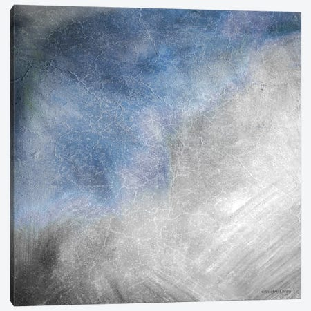 Rugged Coastal Abstract II Canvas Print #BLB231} by Bluebird Barn Canvas Art Print