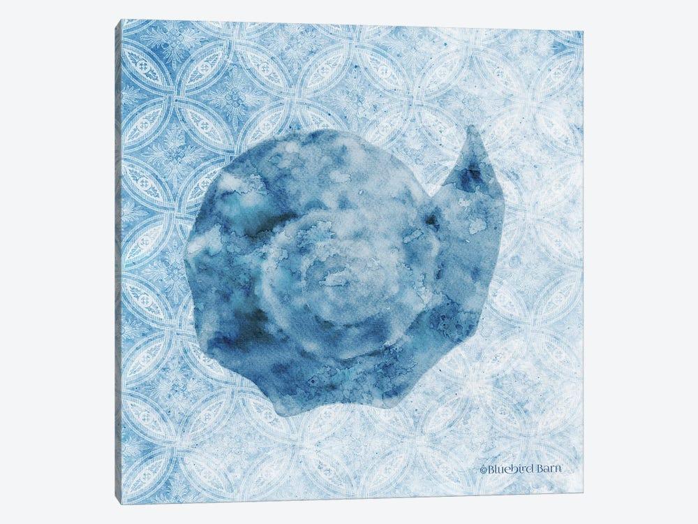 Seashell II by Bluebird Barn 1-piece Canvas Print