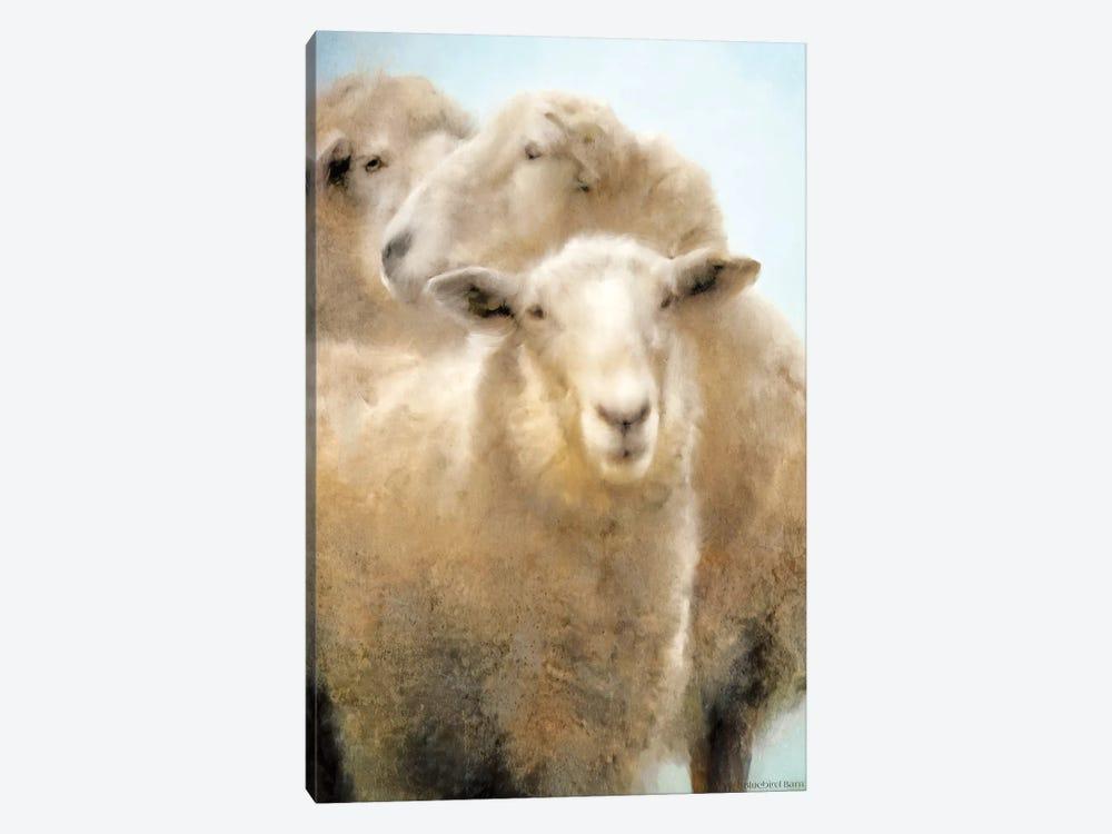 Three Sheep Portrait by Bluebird Barn 1-piece Canvas Artwork