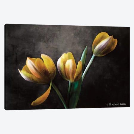 Contemporary Floral Tulips Canvas Print #BLB24} by Bluebird Barn Canvas Artwork
