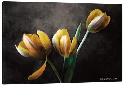 Contemporary Floral Tulips Canvas Art Print