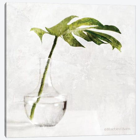 Single Green Stem In Glass Canvas Print #BLB252} by Bluebird Barn Canvas Art Print