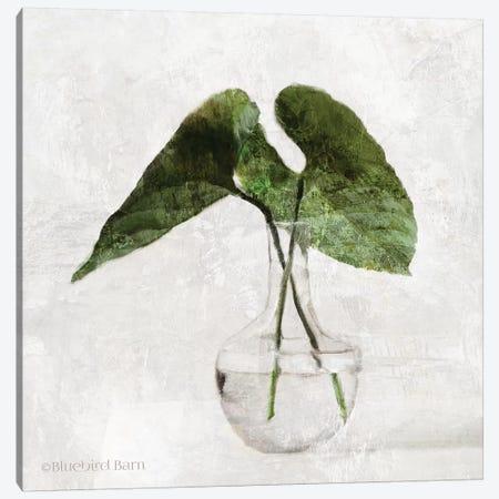 Stems In Glass Canvas Print #BLB254} by Bluebird Barn Canvas Wall Art