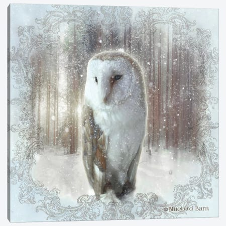 Enchanted Winter Owl Canvas Print #BLB264} by Bluebird Barn Art Print