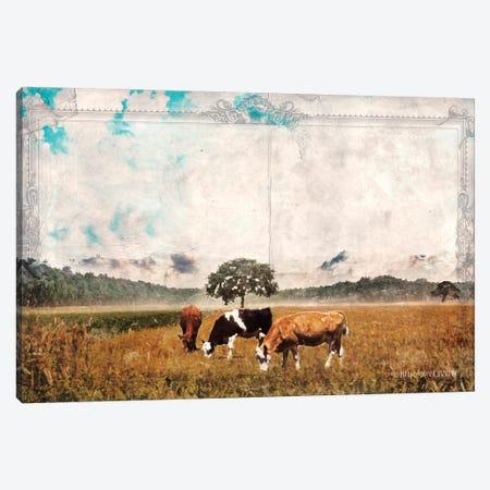 Vintage Grazing Cattle Canvas Print #BLB273} by Bluebird Barn Canvas Art Print