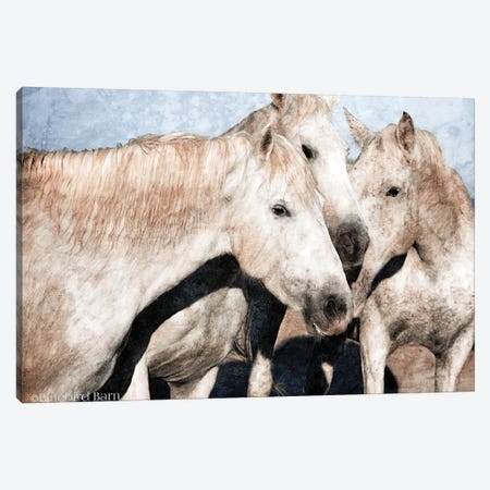 White Horse Canvas Print #BLB275} by Bluebird Barn Canvas Wall Art