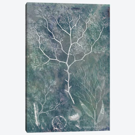Delicate Sea Coral Canvas Print #BLB27} by Bluebird Barn Canvas Artwork