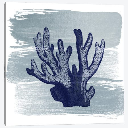Brushed Midnight Blue Elkhorn Coral Canvas Print #BLB286} by Bluebird Barn Canvas Art Print