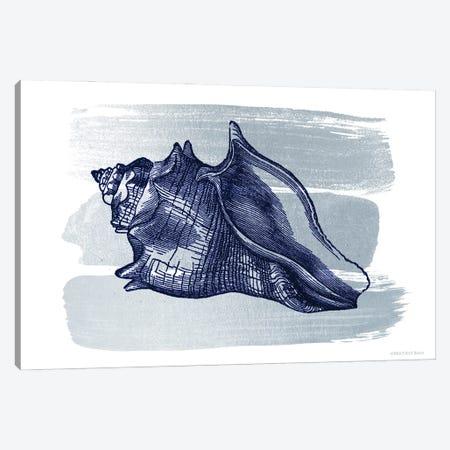 Brushed Midnight Blue Seashell     Canvas Print #BLB287} by Bluebird Barn Canvas Print