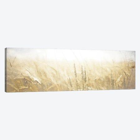 Fields of Gold Canvas Print #BLB289} by Bluebird Barn Canvas Artwork