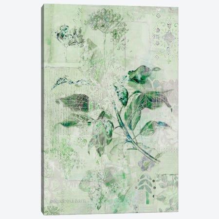 Dreamy Green Botanical I Canvas Print #BLB29} by Bluebird Barn Art Print