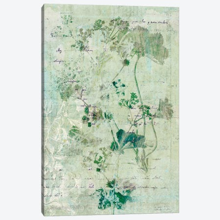 Dreamy Green Botanical II Canvas Print #BLB30} by Bluebird Barn Canvas Wall Art