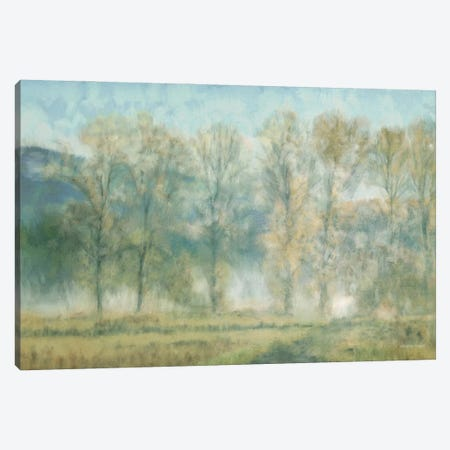 Peaceful Tree Line Canvas Print #BLB312} by Bluebird Barn Canvas Art