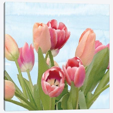 Fresh Spring Tulips IV Canvas Print #BLB38} by Bluebird Barn Canvas Wall Art