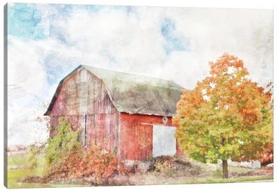 Autumn Maple by the Barn Canvas Art Print