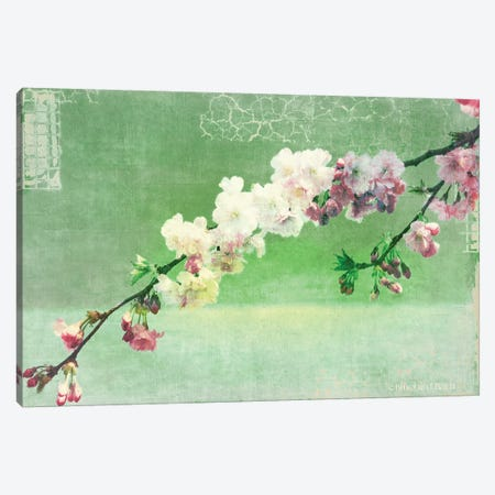 Green and Pink Arching Blossom Canvas Print #BLB40} by Bluebird Barn Art Print