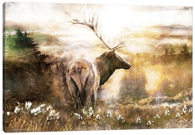 Heading Home Canvas Art Print