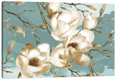Magnolia I Canvas Art Print