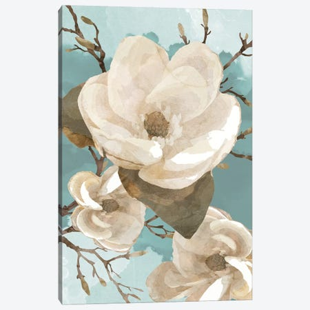 Magnolia II Canvas Print #BLB54} by Bluebird Barn Canvas Art Print