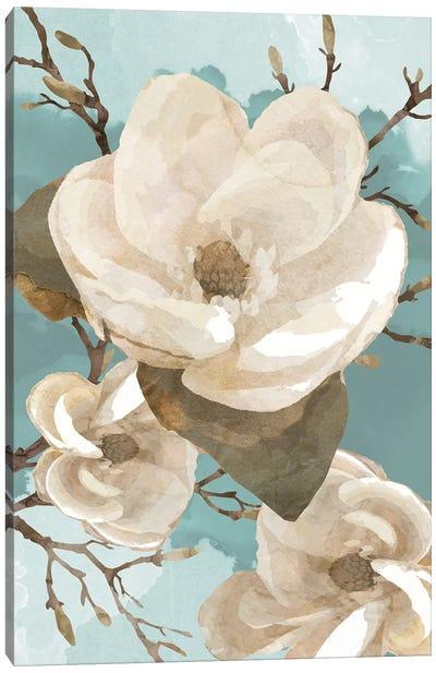 Magnolia II Canvas Art Print