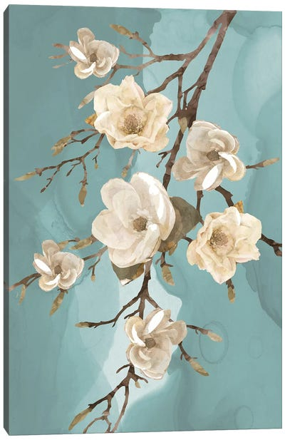 Magnolia III Canvas Art Print
