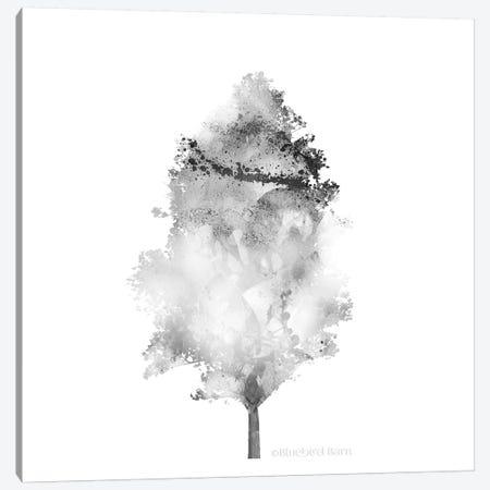 Modern Mountain Aspen Tree Canvas Print #BLB56} by Bluebird Barn Canvas Art Print