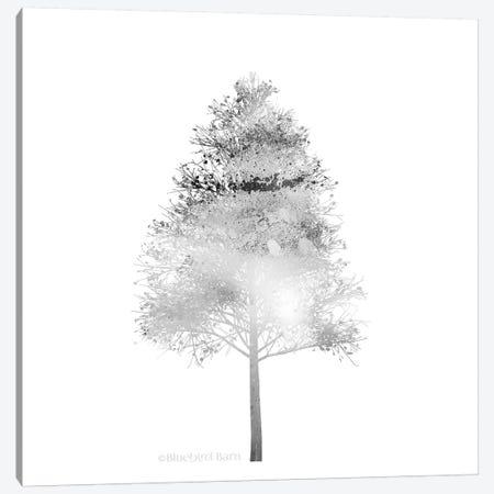 Modern Mountain Birch Tree Canvas Print #BLB57} by Bluebird Barn Canvas Print