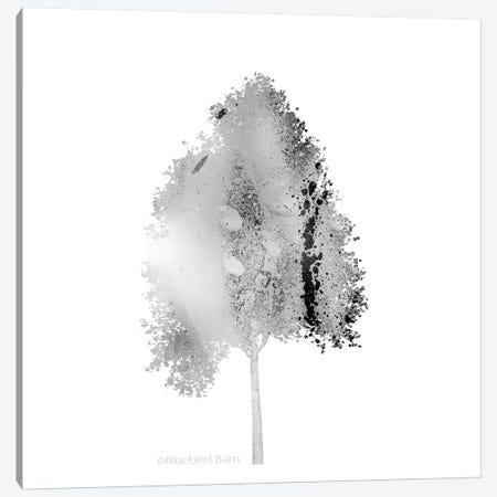 Modern Mountain Maple Tree Canvas Print #BLB58} by Bluebird Barn Canvas Art