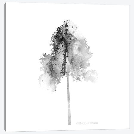 Modern Mountain Tulip Tree Canvas Print #BLB59} by Bluebird Barn Canvas Art