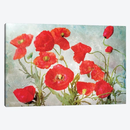Poppies Canvas Print #BLB71} by Bluebird Barn Canvas Art