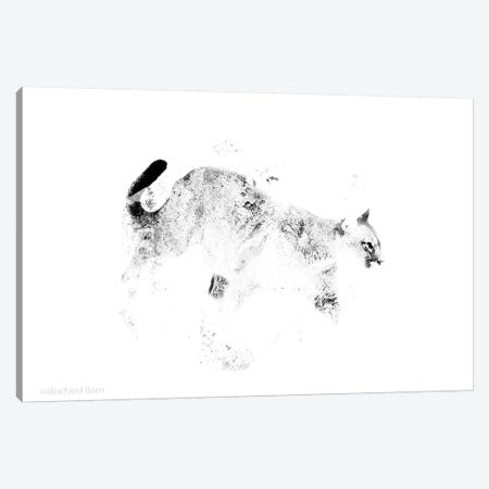 Prowling Wild Minimalist Mountain Lion Canvas Print #BLB72} by Bluebird Barn Canvas Artwork