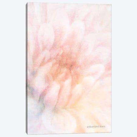 Soft Dahlia Pastel Peach Canvas Print #BLB83} by Bluebird Barn Art Print