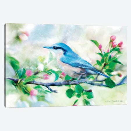 Spring Blue Bird on a Bough Canvas Print #BLB89} by Bluebird Barn Canvas Art Print