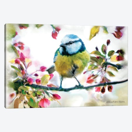 Spring Yellow Bird on a Bough Canvas Print #BLB91} by Bluebird Barn Canvas Art