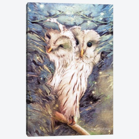 Tow Peek a Boo Owls Canvas Print #BLB98} by Bluebird Barn Canvas Artwork