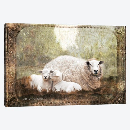 Vintage Ewe and Sleeping Lambs Canvas Print #BLB99} by Bluebird Barn Canvas Artwork