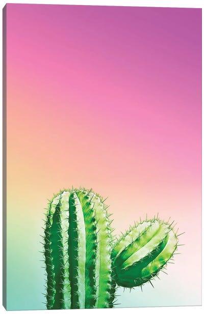 Wild Desert Canvas Art Print