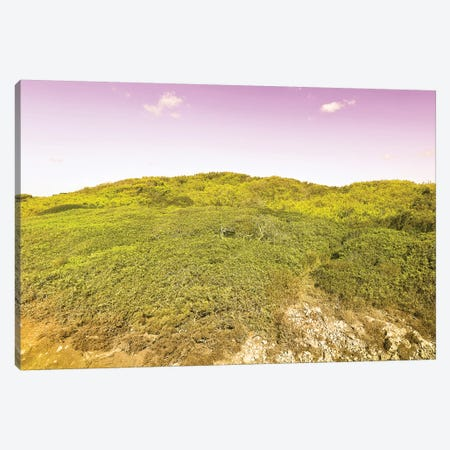 Wild Nature Canvas Print #BLI109} by Beli Canvas Wall Art