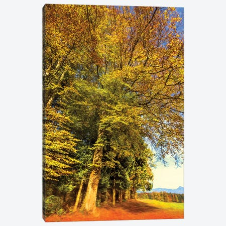 Autumn Landscape Canvas Print #BLI11} by Beli Canvas Art Print