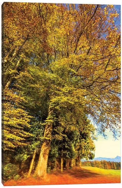 Autumn Landscape Canvas Art Print