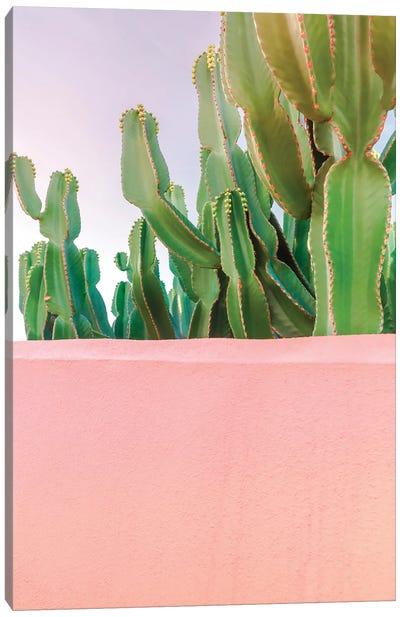 Cactus Jungle Canvas Art Print