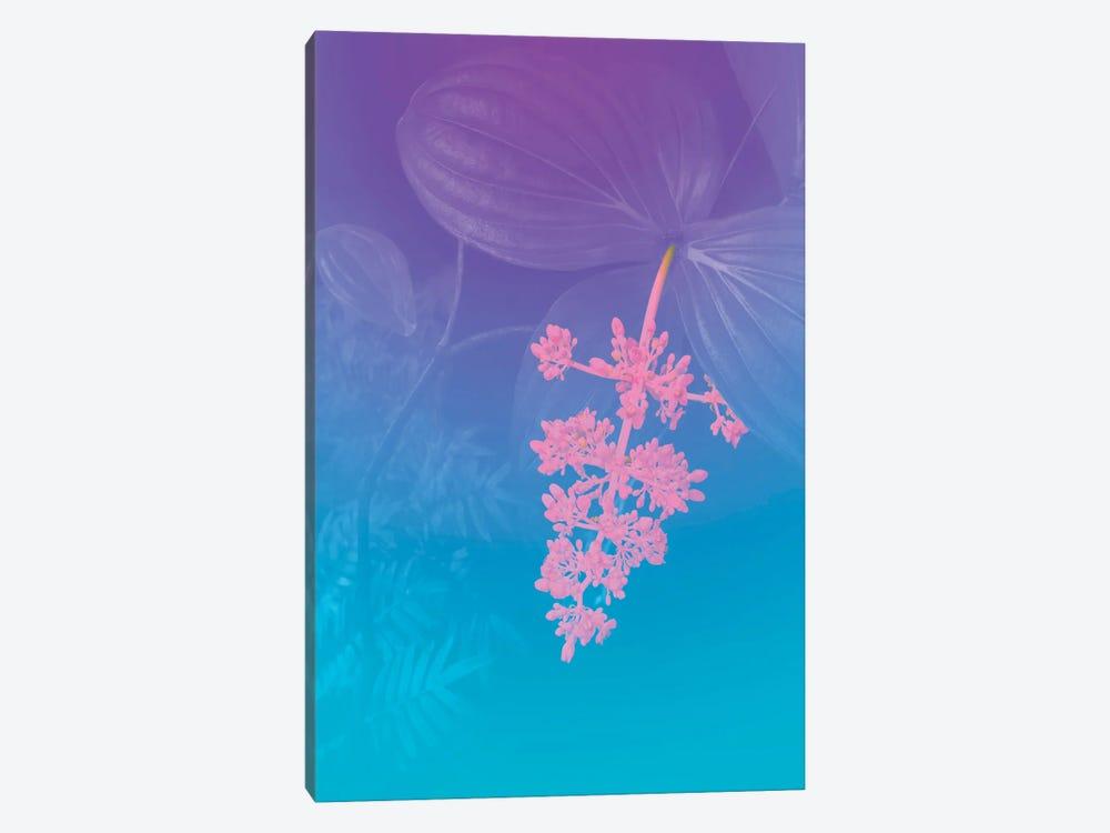 Vibrant Tropical Flower by Beli 1-piece Canvas Print