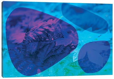 Abstract Blue Stones And Foliage Canvas Art Print