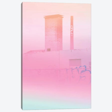 Concrete Flowers And Graffiti Canvas Print #BLI28} by Beli Canvas Wall Art