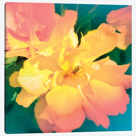 Electric Flower Canvas Print #BLI32} by Beli Art Print