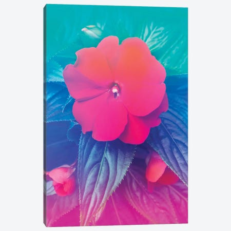 Exotic Flowers Hologram Canvas Print #BLI33} by Beli Art Print