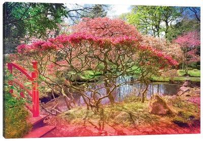 Japanese Garden And Pond Canvas Art Print